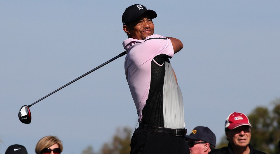 -c- Getty Woods torrey Pines2