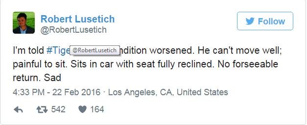 Tweet Lusetich